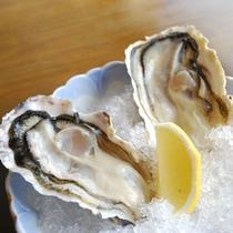 的矢で水揚げされた新鮮な牡蠣はレモンで