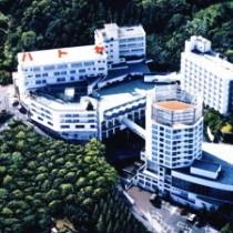 上空からのホテル全景