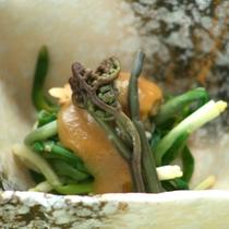 2015年春プラン「山菜料理」