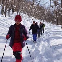 雪の野山を散策(スノーシュープラン)
