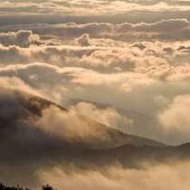 見事に広がる雲海