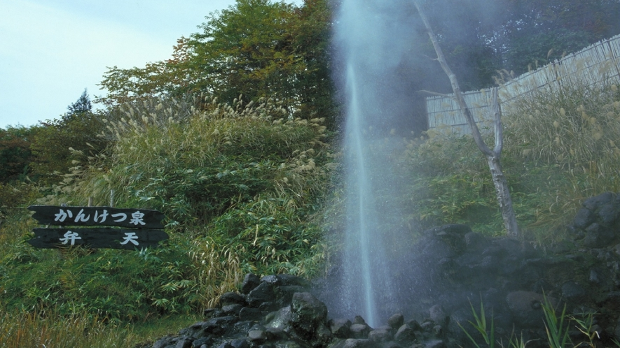 【周辺観光】間歇泉
