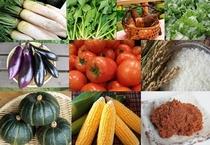 旬の野菜はお客様の栄養バランスも整えます!