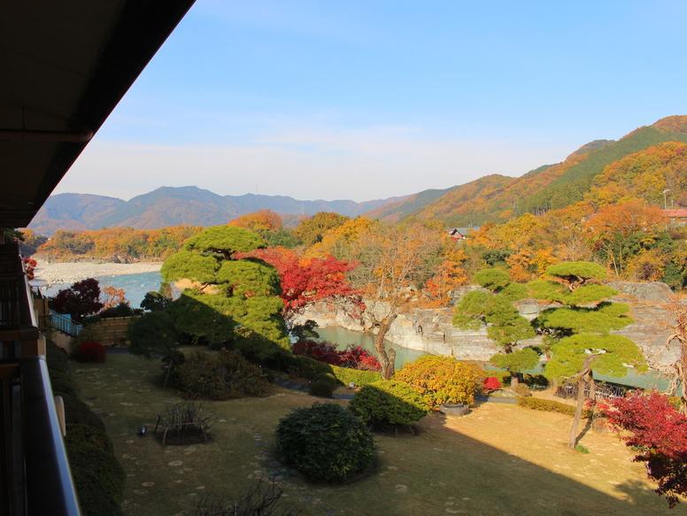客室から見た庭園(11月頃)