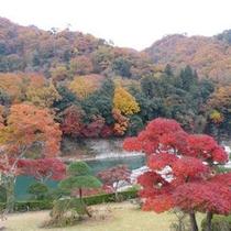 【庭園・秋】