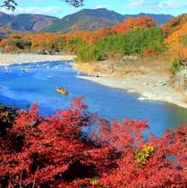 【紅葉】荒川を舟がくだります。