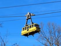 宝登山ロープウェイで空中散歩♪山頂には季節の花が咲き、宝登山神社奥宮や小動物公園も。
