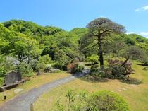 お部屋からも庭園に咲く四季折々のお花を眺められます。庭園にある3つの句碑にも注目です!