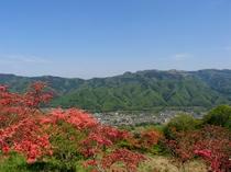 【4・5月】5月2日は山頂宝登山神社奥宮の大祭。ツツジまつりとも言われます。山頂から長瀞を見下ろす。