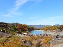 【11月は長瀞紅葉まつり♪】岩畳・徒歩2分★当館から見える対岸の紅葉、岩畳ではもっと間近に!