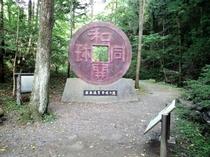 聖神社は、和同開珎に使われた銅の産地。メディアにも取り上げられる人気スポットです。