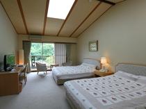 洋室は1室のみ。人気客室のためご予約はお早めに…ベッドはセミダブルなので、広々使えます。