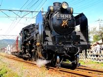 【4-11月】SLパレオエクスプレスは、土休日を中心に運行。大迫力の車体や豪快な汽笛に圧倒されます!