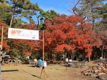 【11月は長瀞紅葉まつり♪】月の石もみじ公園・徒歩15分★長瀞を代表する紅葉スポット。