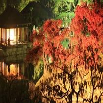 栗林公園 紅葉ライトアップ