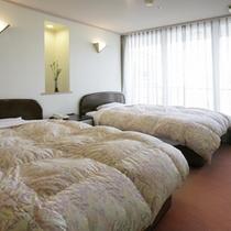特別室和洋室タイプ(ツインベッドルーム)
