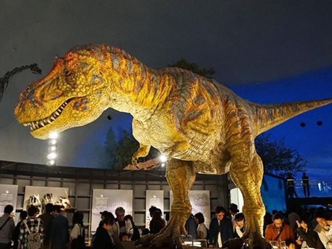 【恐竜博物館】