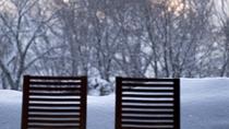 ◆中庭を眺める/冬には北海道らしい雪景色が広がります。