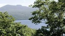 ◆支笏の森「散策路」/天候に恵まれれば、散策路から支笏湖が見えるかも!おすすめのフォトスポットです♪