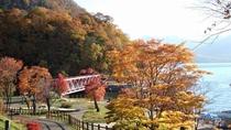 ◆支笏湖の紅葉(イメージ写真)/例年10月上旬~中旬は、湖畔から紅葉の絶景が愉しめます