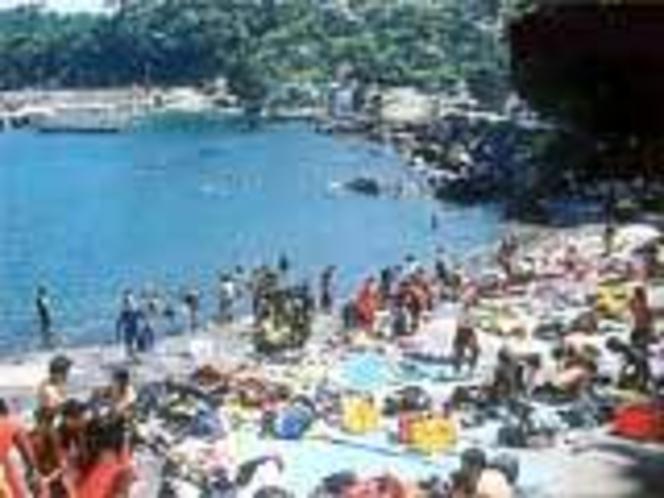 夏-富戸海岸
