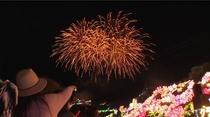 イルミネーションと花火の競演