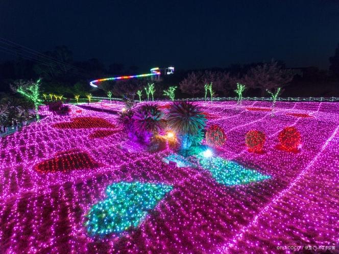 ぐらんぱる公園・グランドイルミネーション・ピンクの世界