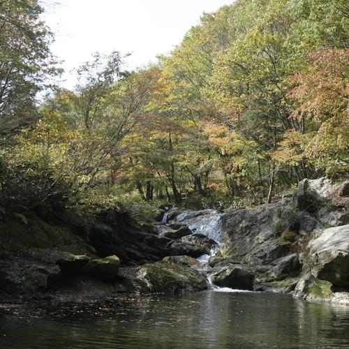 周辺情報:逢滝(おうたき)