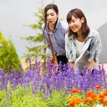 当館に隣接する「フラワー&ガーデン」御宿泊の際は是非園内をお散歩してみて下さい♪
