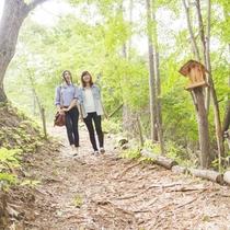 自然豊かなホテル周りの散策路をお散歩なんていかがでしょう♪