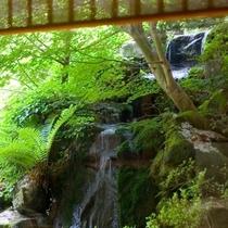 館内の風景【和】 緑の風景