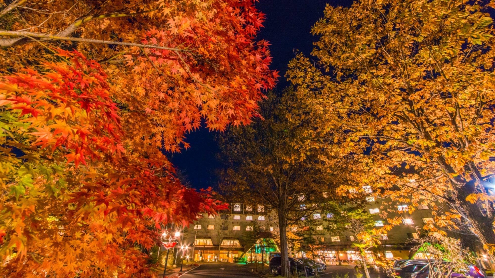 【外観/秋】美しい紅葉に彩られる敷地内
