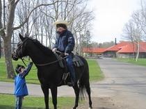 馬のテーマパーク「ノーザンホースパーク」さん