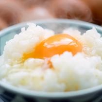 ほかほかご飯に♪とろーり卵!贅沢卵かけご飯