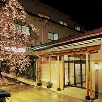 枝垂桜がお出迎えする春の宝生閣