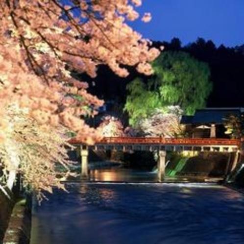 飛騨高山・春のライトアップ