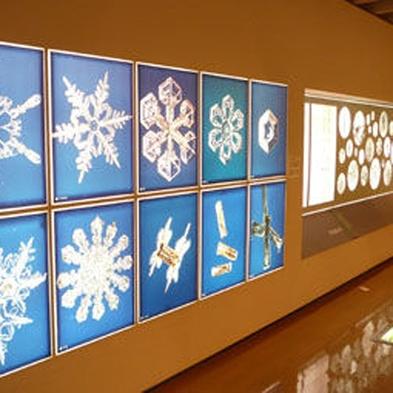 雪と氷の実験・観察をしよう!雪の科学館入館券&スイーツセット付き★〜雪の美しさを知る旅〜