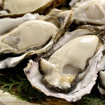名物:ぷりっぷりの牡蠣