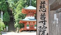 *慈尊院正門【九度山町】弘法大師が高野山の表玄関として創建した、真言宗のお寺。車で約25分