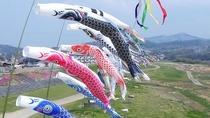 *【5月】吉野川の河川敷に鯉のぼり群が出現します(4月末より)。