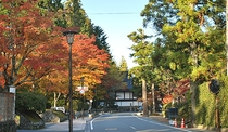 *■高野山・秋の紅葉【高野町】撮影時期は11月3日早朝
