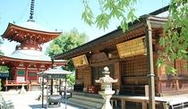 *慈尊院【九度山町】高野詣りは慈尊院から。女人高野の寺。