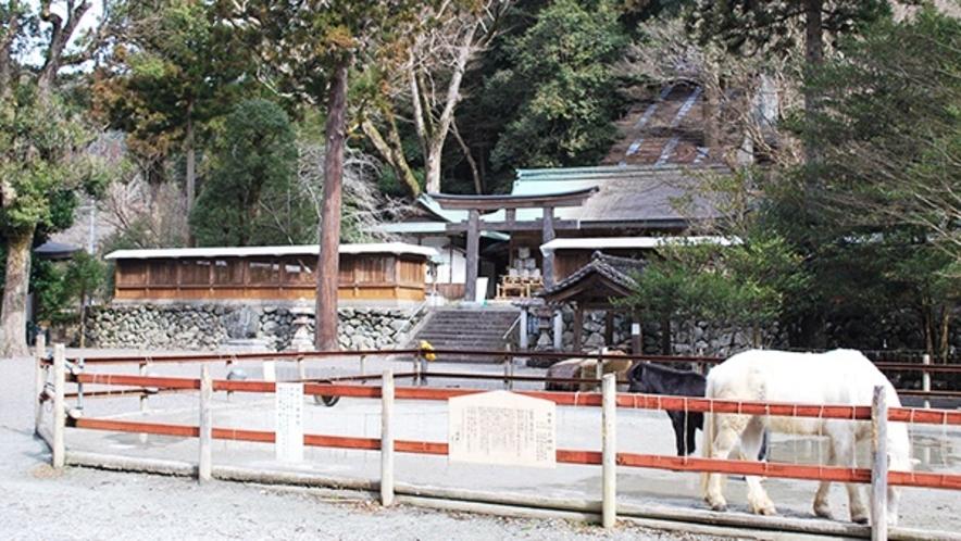 *丹生川上神社下社【黒滝村】境内に白・黒の2頭の馬がいます。