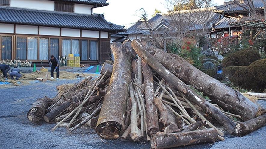 *【1月】初詣は奈良・和歌山の神社仏閣へ。写真は橋本市の隅田八幡神社境内。