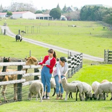 【マザー牧場 入園チケット付き】 広々園内で動物とのふれあい体験☆ マザー牧場チケット付きバイキング