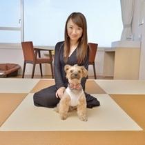 ■ペットと泊まれる 2階 琉球畳 和室10畳