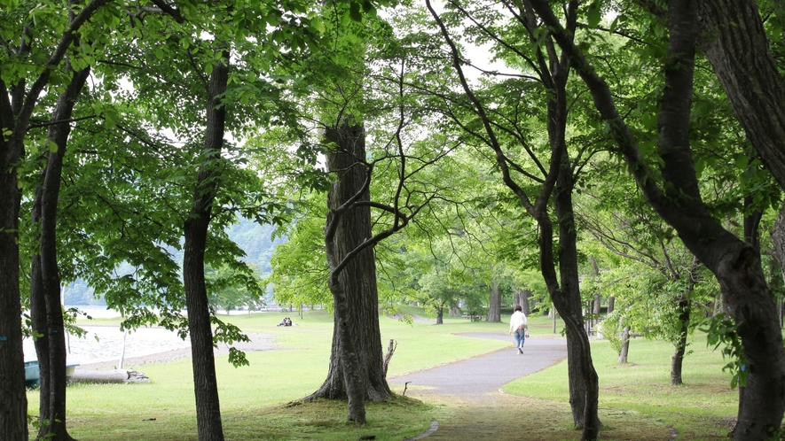 湖畔には遊歩道が整備されています。