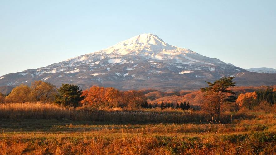 【秋】鮮やかな景色をお楽しみください