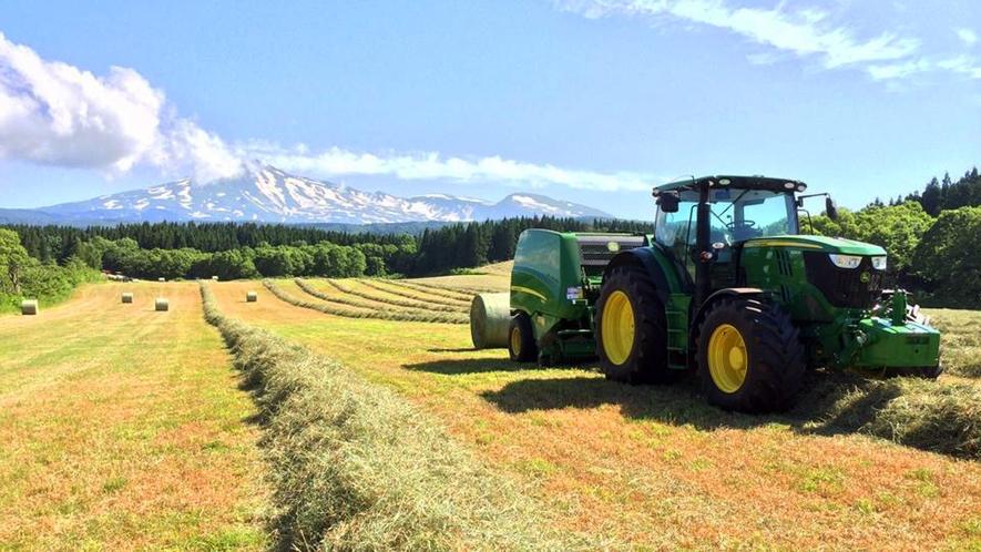 【ポニーランド花立】刈られて乾燥した牧草を丸めるロールベイラーというトラクターです。