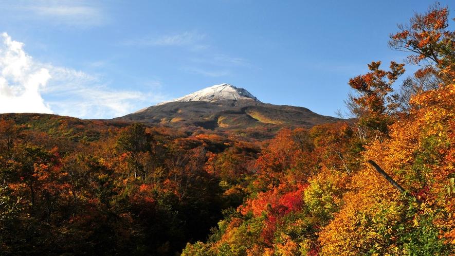 【秋】秋色に染まる鳥海の景色は圧巻です!